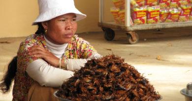 Krekels, een duurzame en avontuurlijke snack