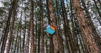 Wonen in een hippe vogelhuisje in Noorwegen